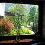 Window view at spring time